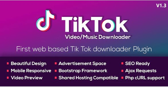 TikTok Video and Music Downloader with no Watermark v1.2